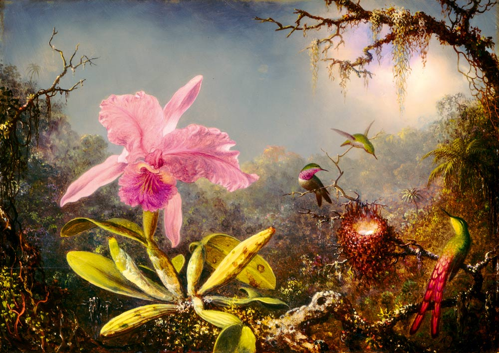Bluebird Puzzle Martin Johnson Heade - Cattleya Orchid and Three Hummingbirds, 1871 1000 Teile Puzzle Art-by-Bluebird-Puzzle-60097 von Bluebird Puzzle